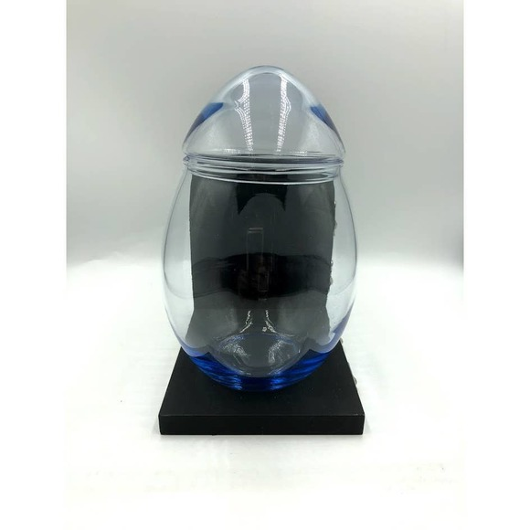 Blue Tint Glass Egg Container with Lid Indent